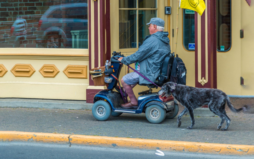 Man in Scooter with Dog.