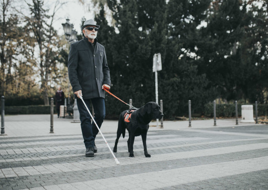 a blind person walking in the street