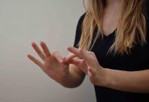 "American Sign Language for ""interpret"""