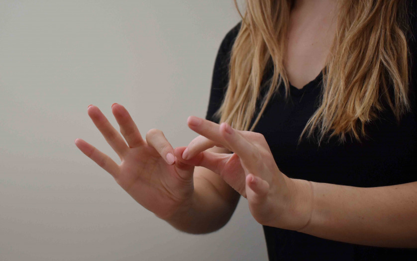 "American Sign Language for ""interpret"""