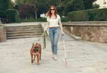 Guide dog helping blind woman on pedestrian crossing.