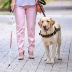blind woman with guide dog in the street