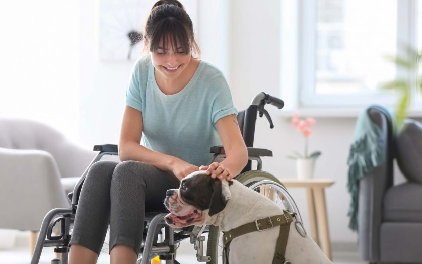 Young woman in wheelchair with service dog at home