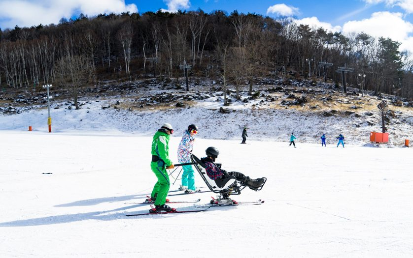 accessible ski